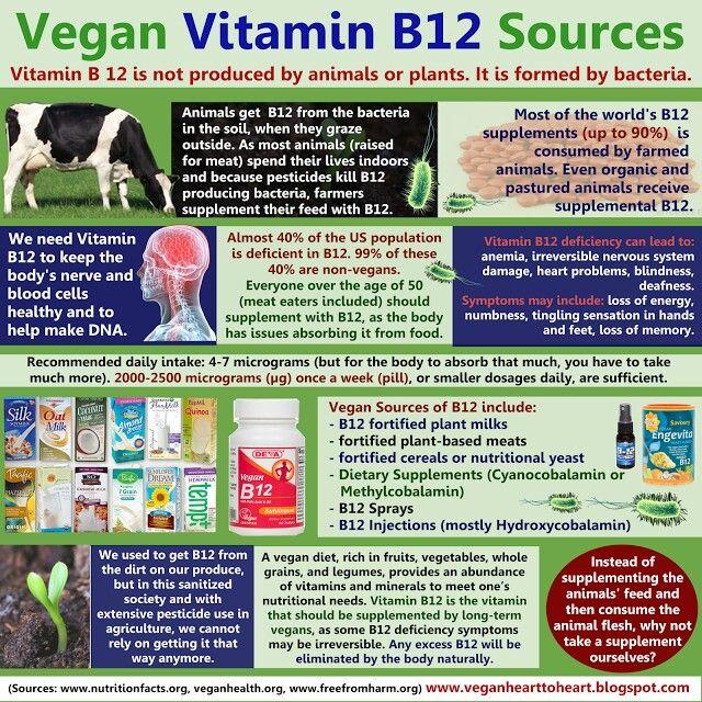Days 21 30 Vegan Earth Soul