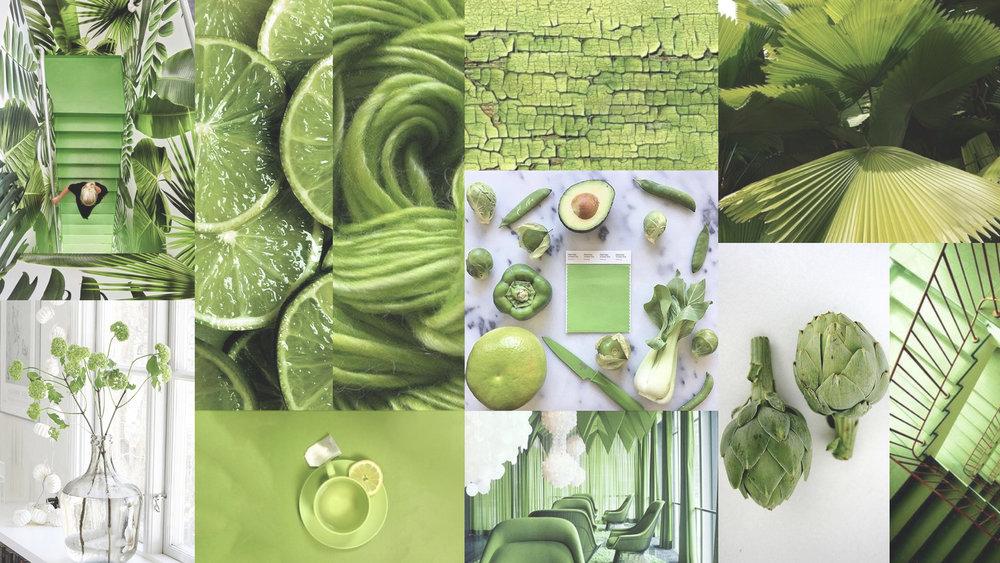 GreeneryMood #pantone #moremood #2017 #greenery #mood #green #pantone2017