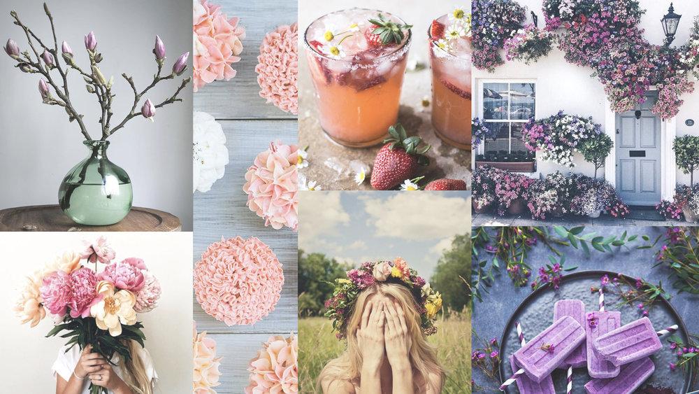 SpringMood #flower #moremood #drink #food #spring #springishere #love #sun