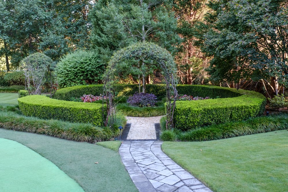 Hedge landscaping installation