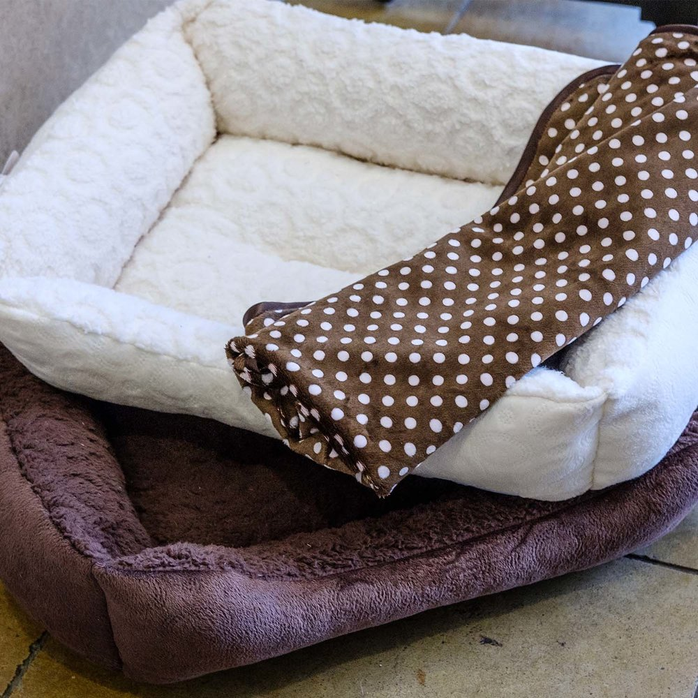 The average dog sleeps 12 to 14 hours a day. Give your dog the best sleep of hise life with a plush bed from Fancy Fur.