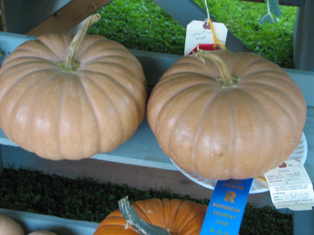 First Place winner at the Riverhead, NY Country Fair in the fall of 2005: Long Island Cheese Pumpkins