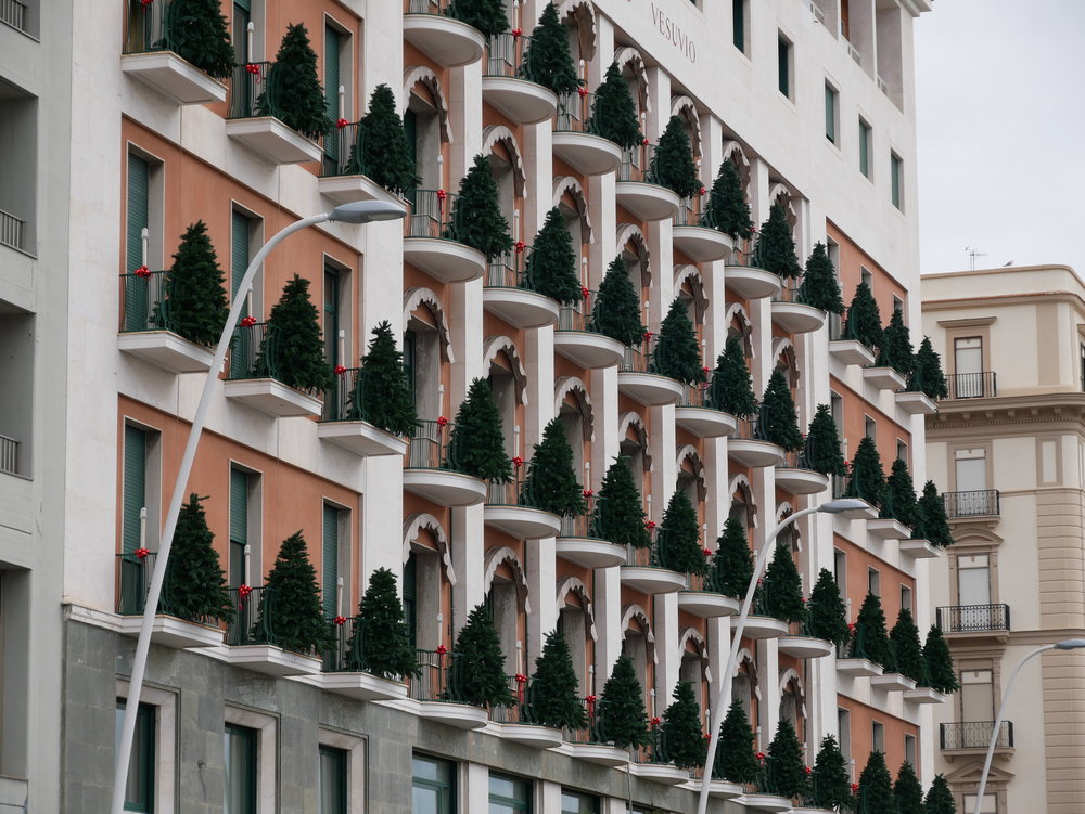 Seville Christmas Trees on balconies.jpg