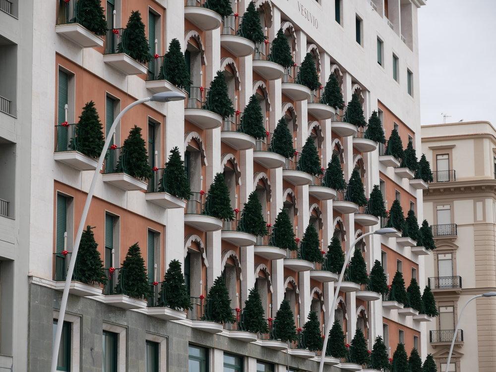 Seville Christmas Trees on balconies.jpg