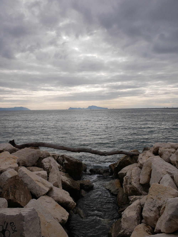 Naples Bay scene.jpg