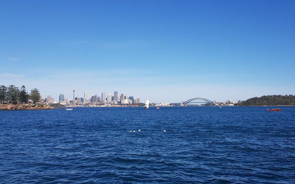 Sydney skyline.jpeg
