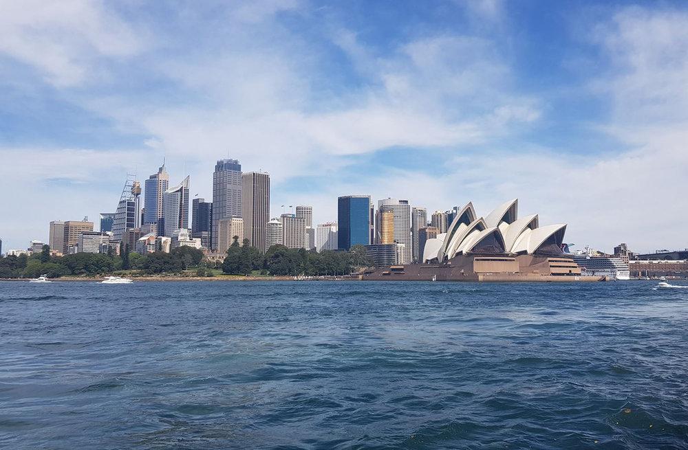 opera house and city.jpeg