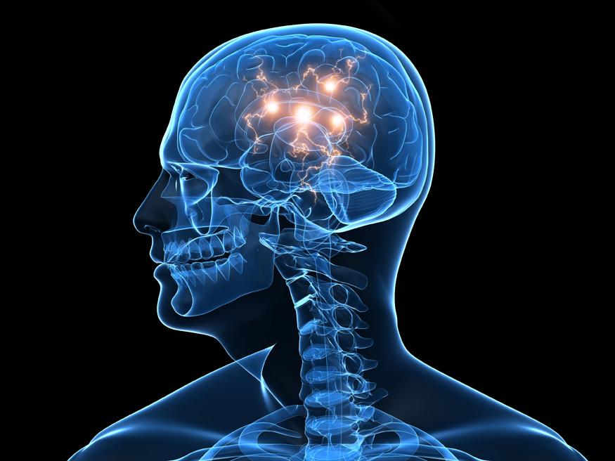 neuro pic.jpg