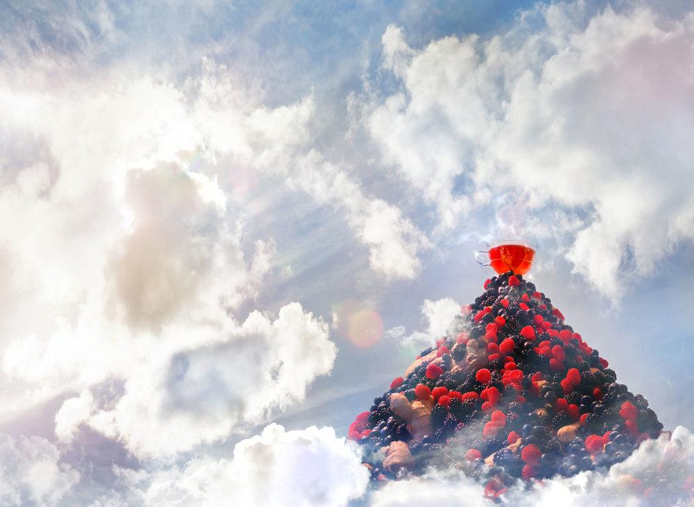 TEA REX Berry Landscape(web).jpg