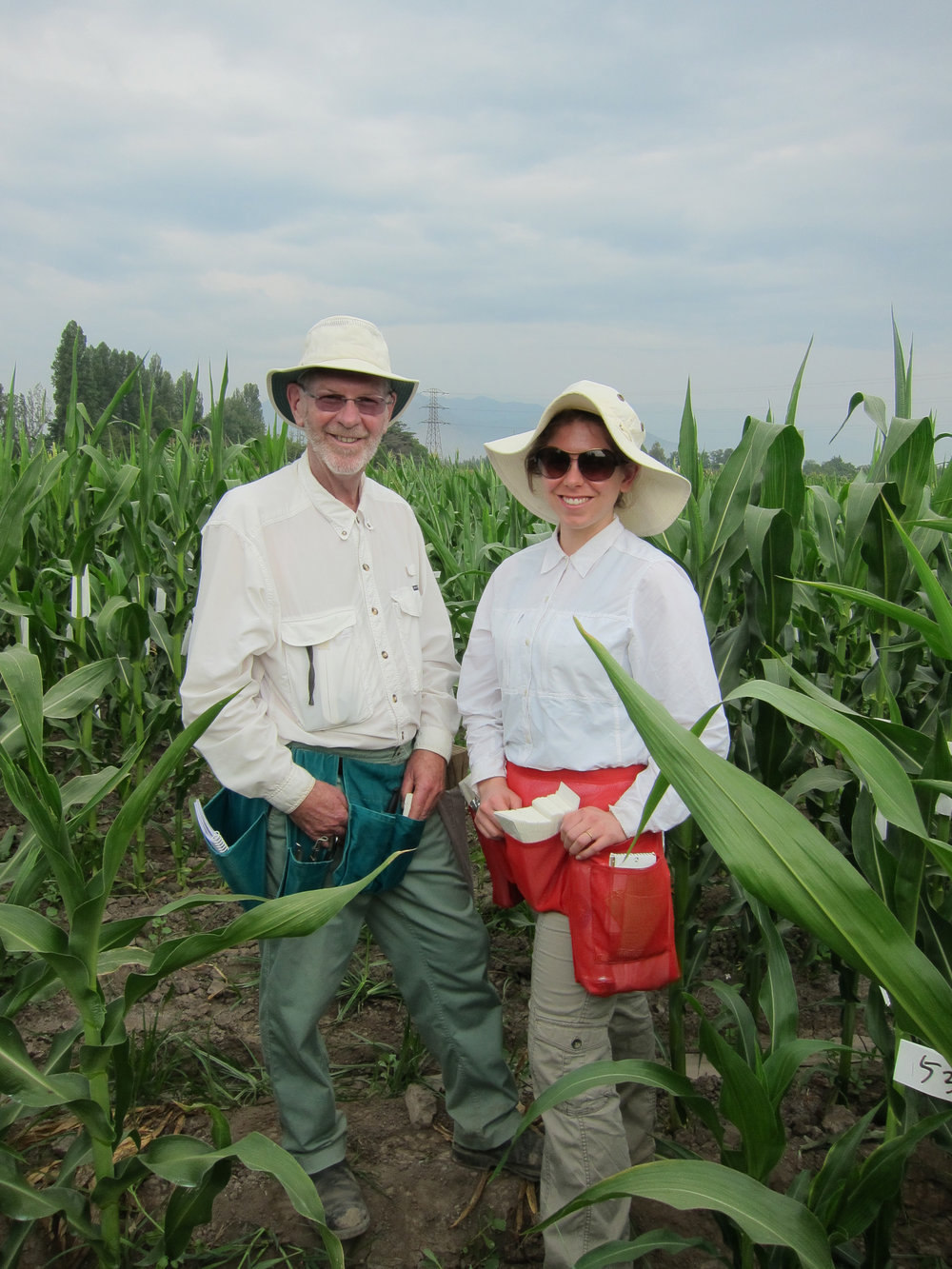 Dr. Francis Glenn and daughter Margo Lee putting on shoot bags in our winter nursery in Chile. By growing a summer nursery in Canada and a winter nursery in Chile we can have two breeding generations per season.