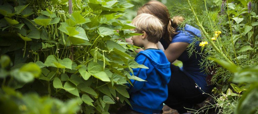 Kids In CC garden 1500 x 666 web.jpg