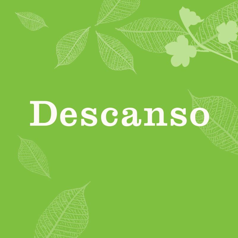 Descanso Gardens: Brand Refresh