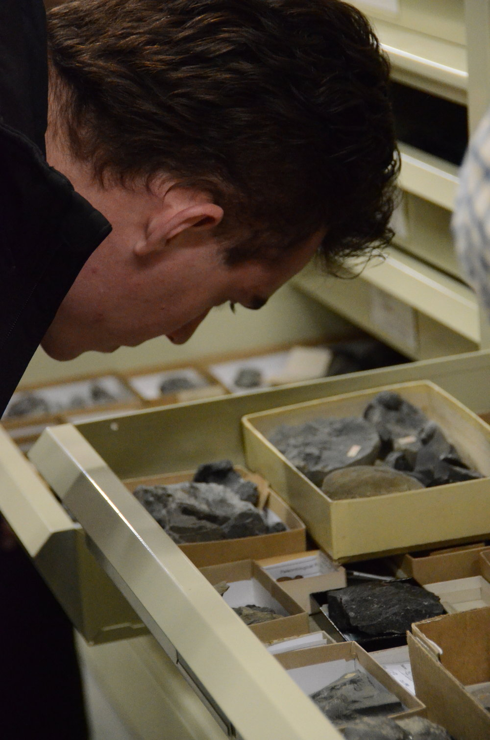 Ryan ('16) explores drawers of fossils at the Paleontological Research Institute