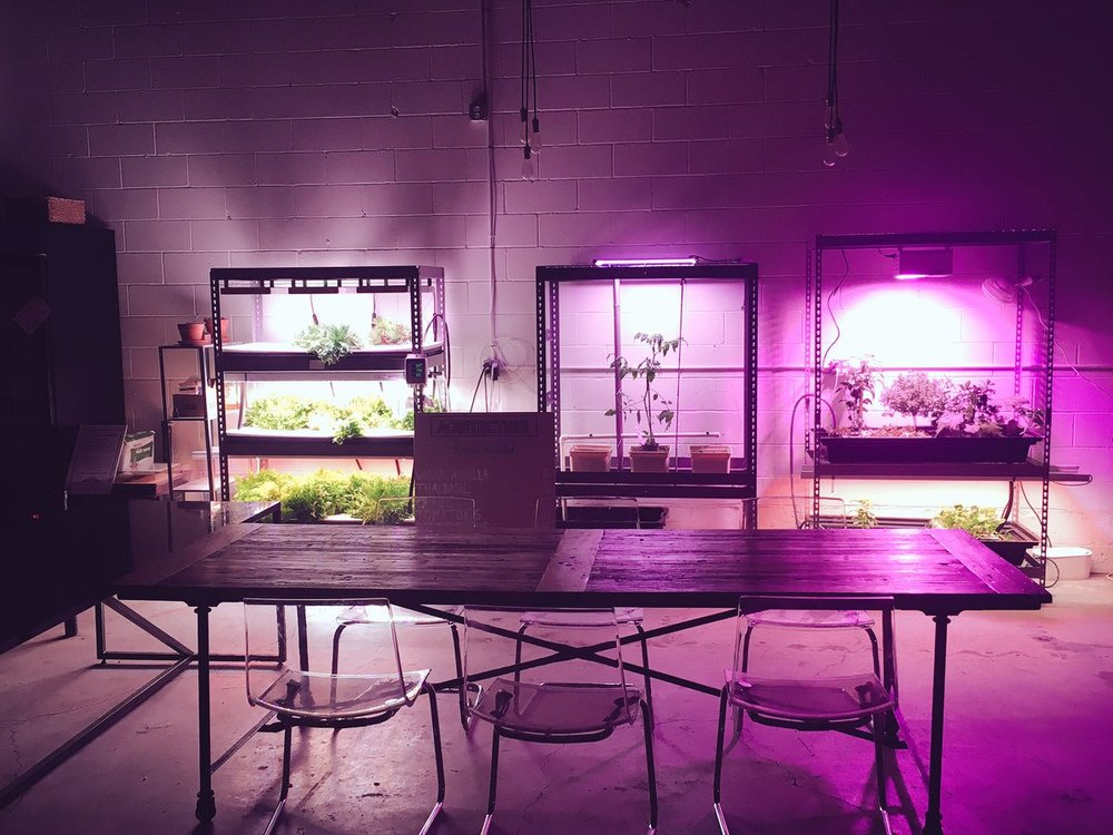 Agritecture  storefront office. Also exhibited at  NYC AgTech Week  2016.