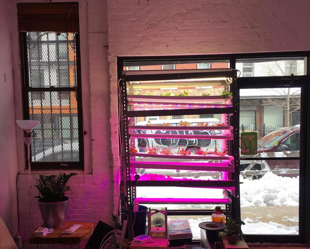 Built by  Agtech-X , an urban agriculture co-working space that opened in Brooklyn, 2017.