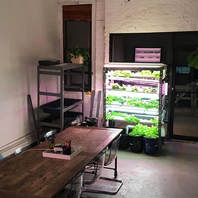 Build your own #verticalfarm www.plus.farm