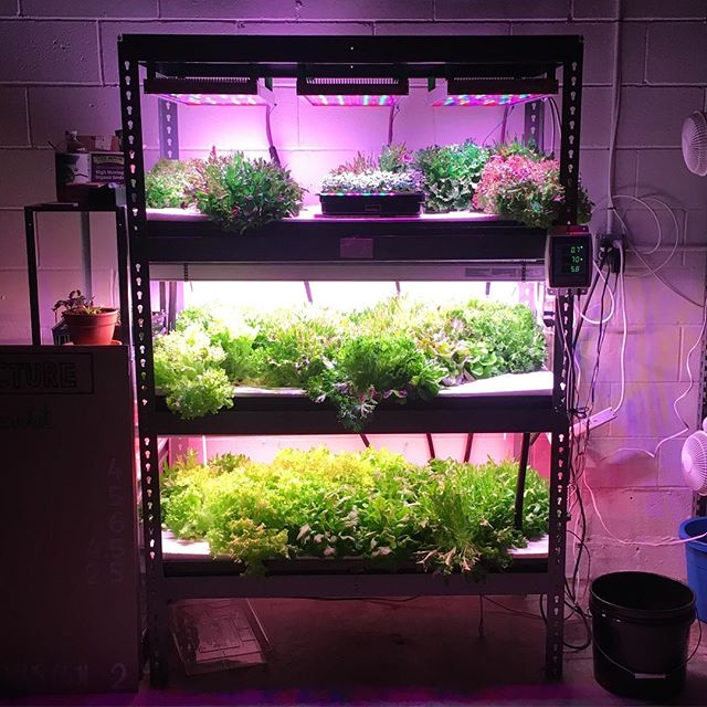 Build me!  www.plus.farm #verticalfarming #DIY #hydroponics #localfood