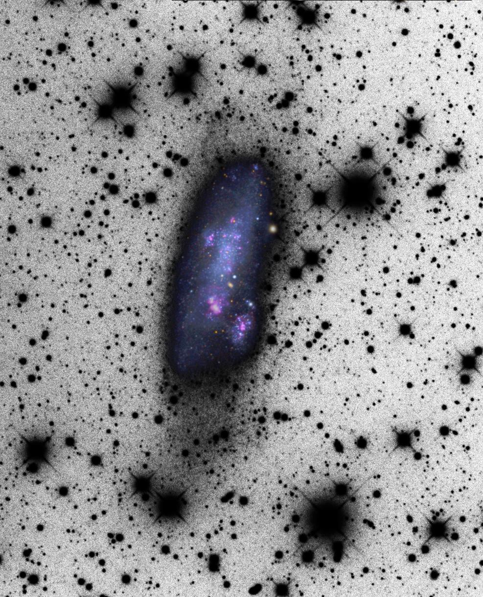 NGC2366color.jpg