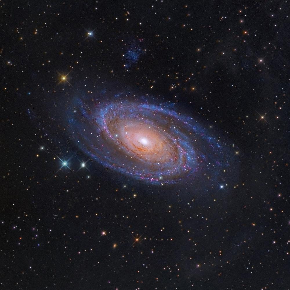 M81 spiral Galaxy (DGRO-Rancho Hidalgo)