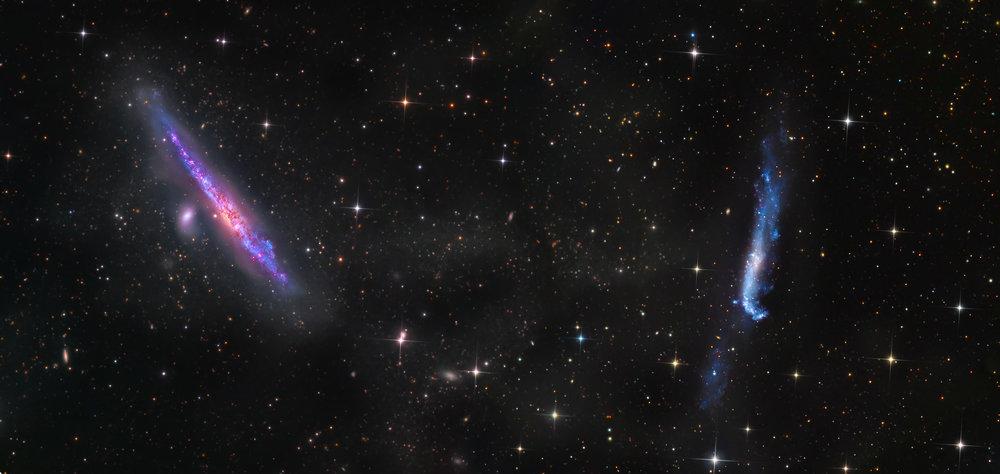 NGC 4656 & 4631 (DGRO- Rancho Hidalgo)