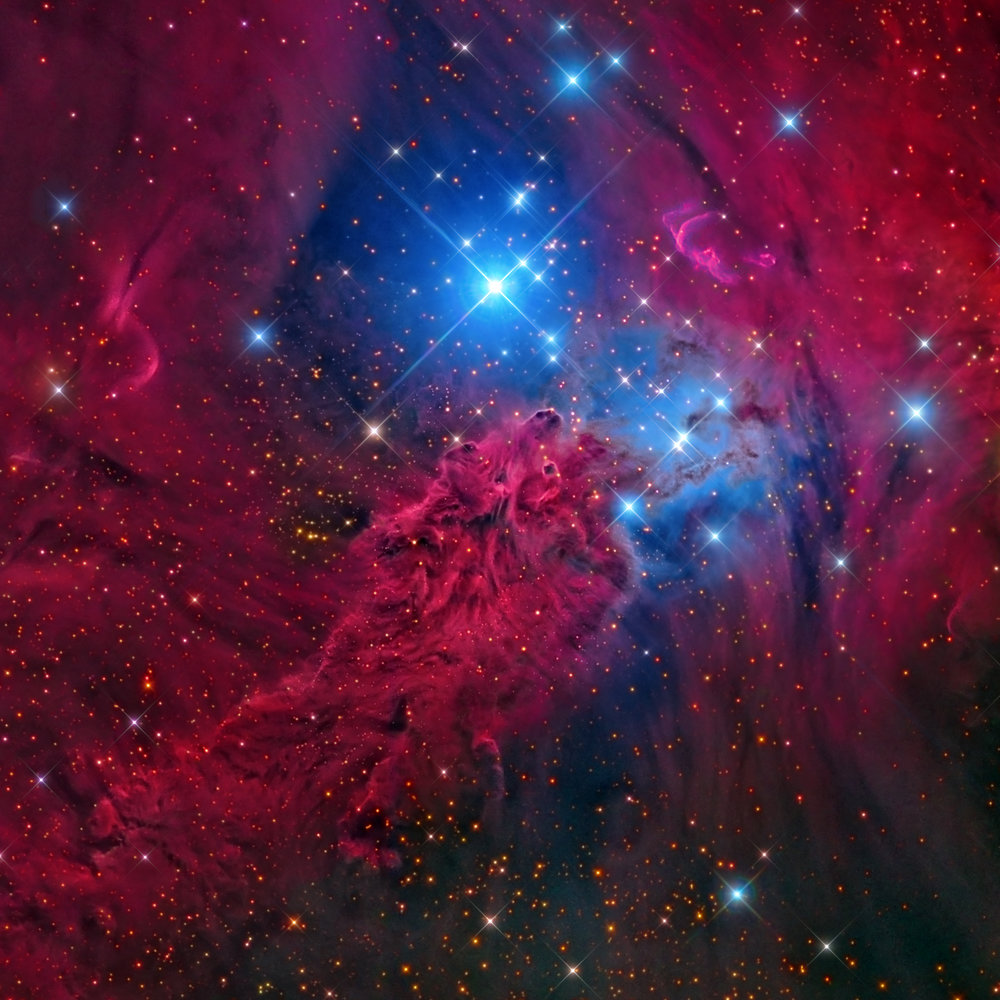 Fox Fur Nebula, NGC 2264
