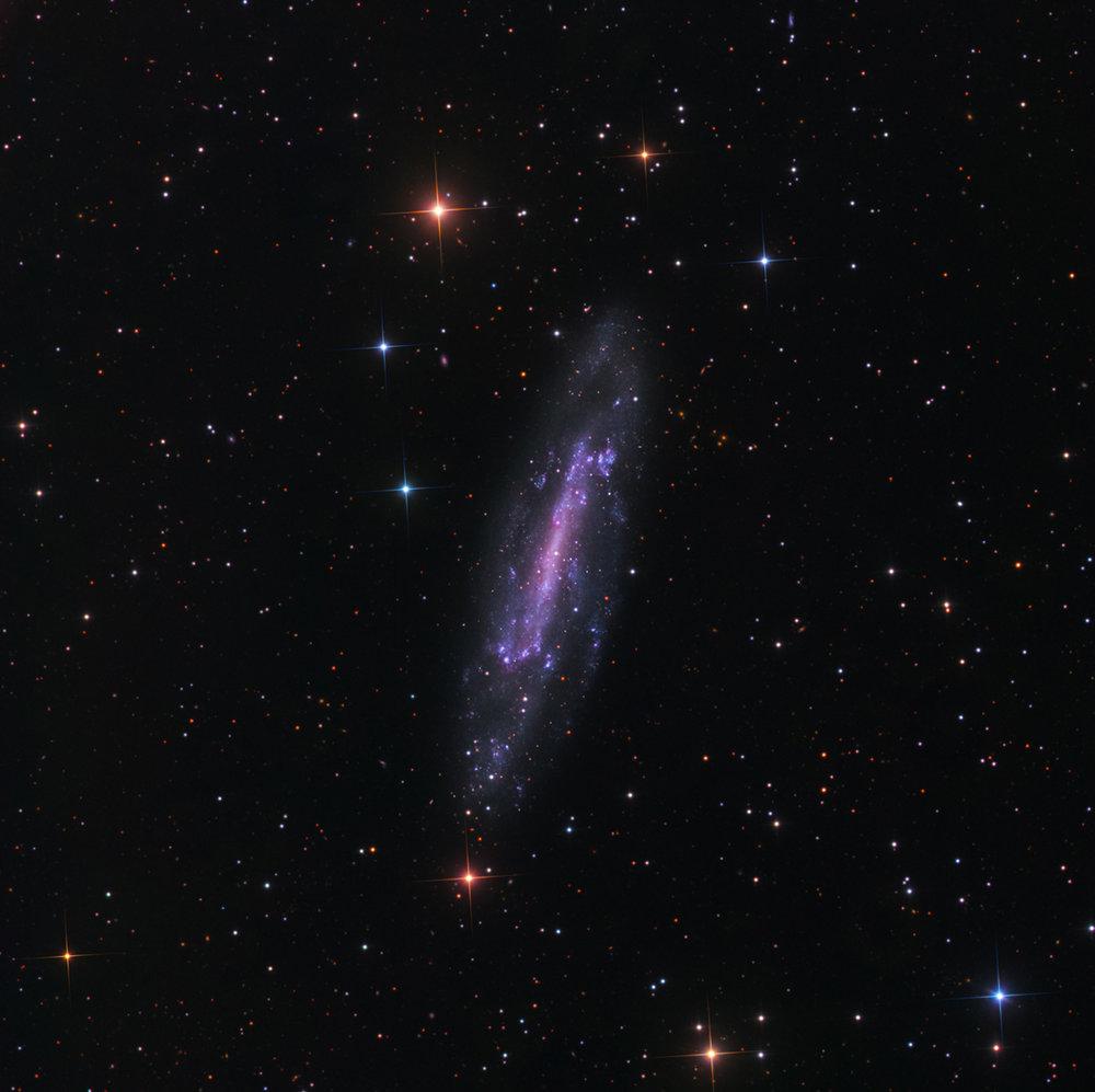 NGC 4236