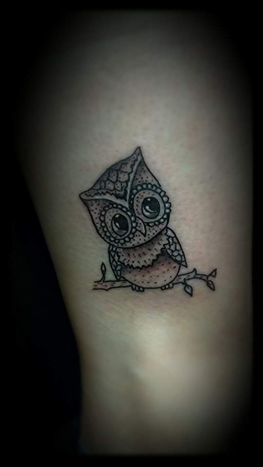 A little hooter by Billy Cook