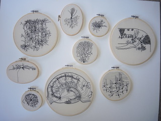 A collection of Hewitt's pieces, based off Ramón y Cajal drawings (top right, bottom center) and her own research. Photo by Sarah Davis