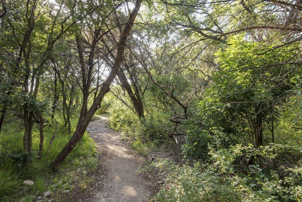 Dedicated Walking Trail