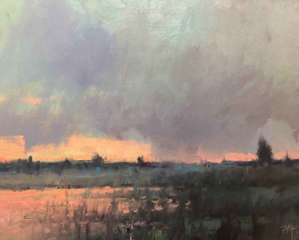' 'First Light-Hullett Marsh'  (Ontario)Sold
