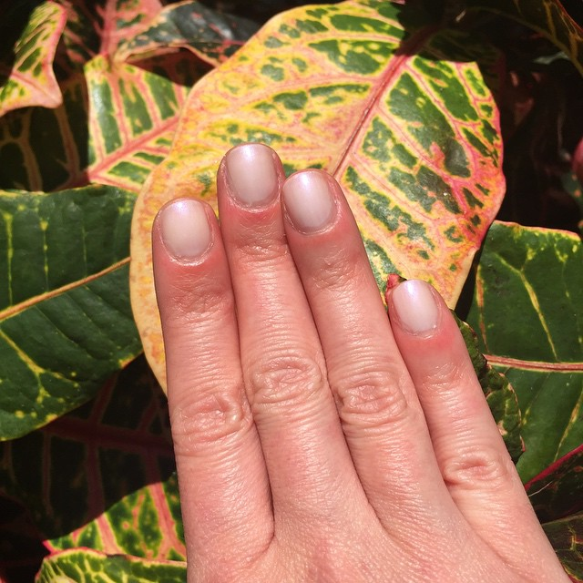 "@zoyanailpolish ""Zoe"" @thezoereport #boxofstyle #manicure #nails #coloroftheweek #beauty"