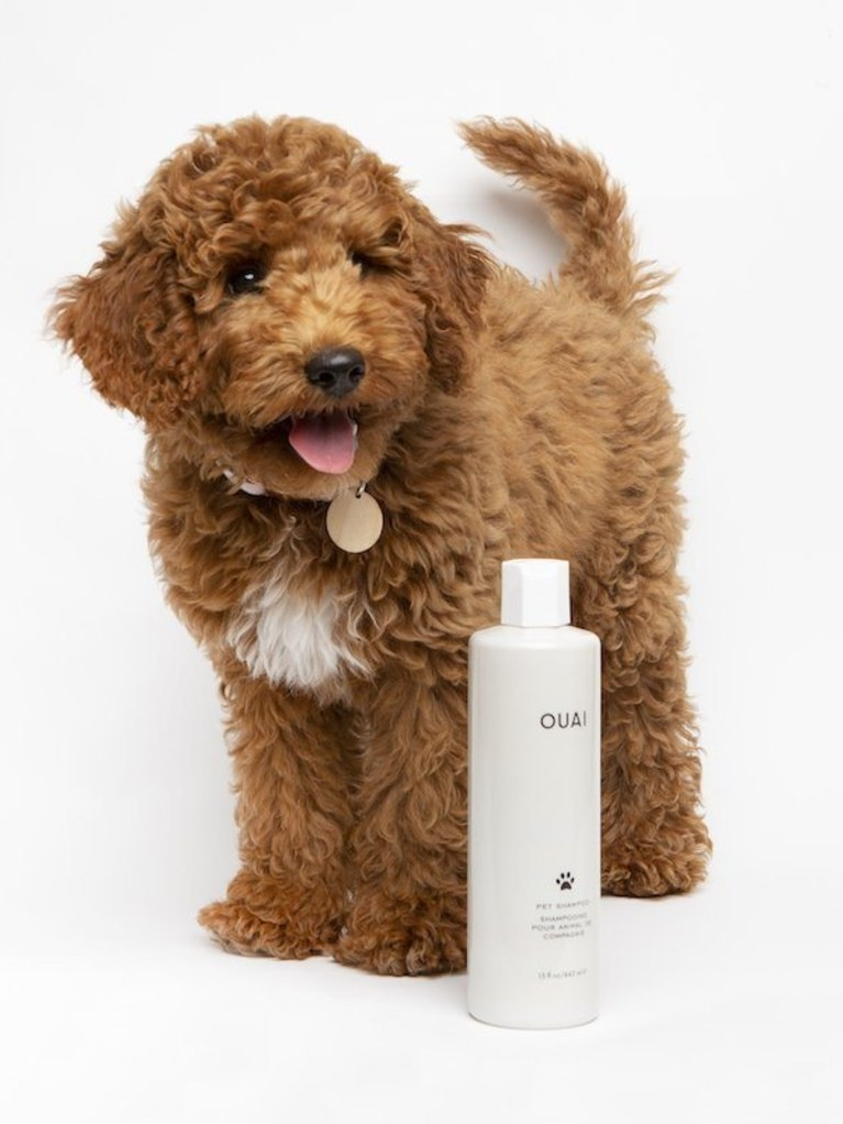 ouai%20pet%20shampoo%20dog.jpg