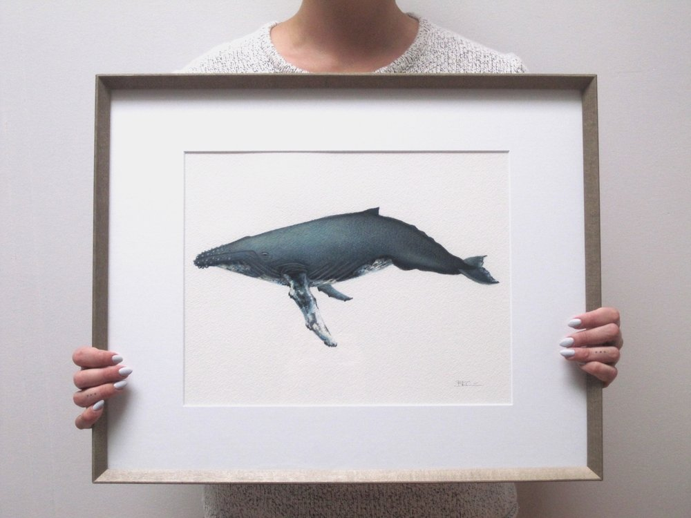 """George""  Humpback Whale Original Painting, Framed"