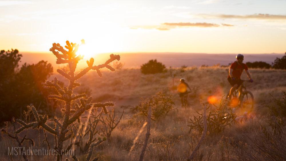 Sandia Foothills 2.jpg