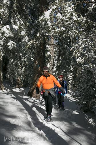 Sandia Snowshoe Race-73.jpg