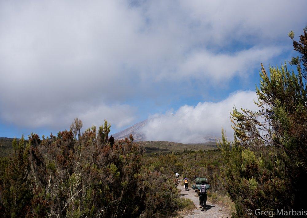 Trekking to Uhuru