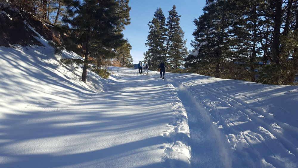 Snowshoeing in the Jemez