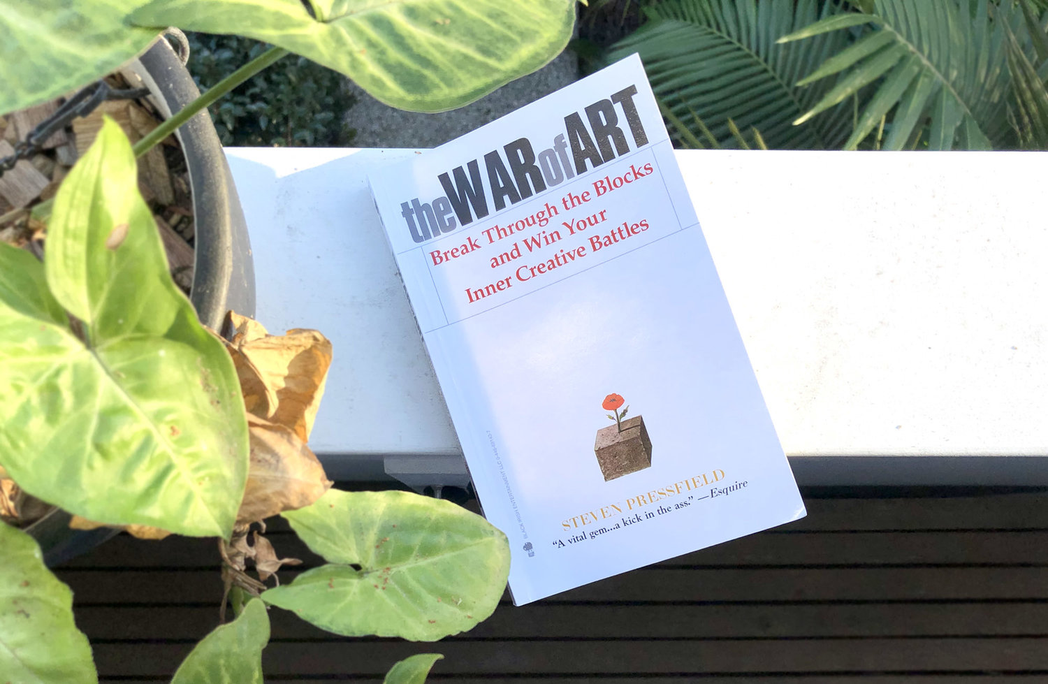 the war of art review