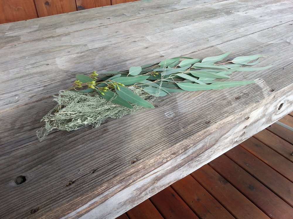 Oakmoss and Eucalyptus collected in Winter
