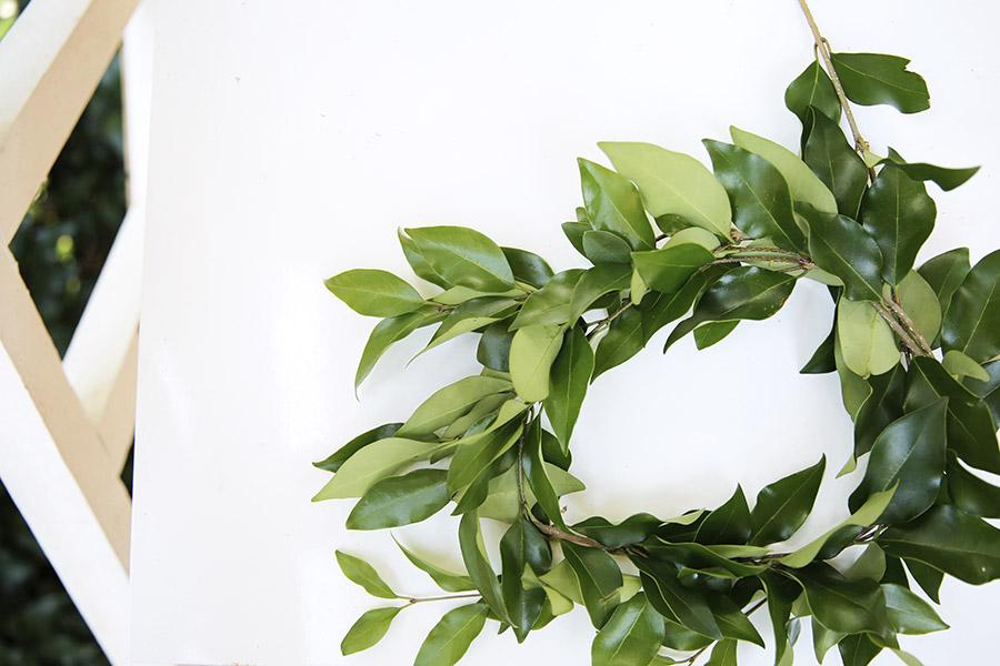 Leaf Crowns 1.jpg