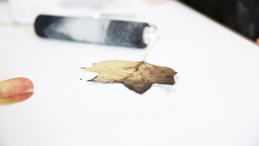 Leaf Print 1.jpg
