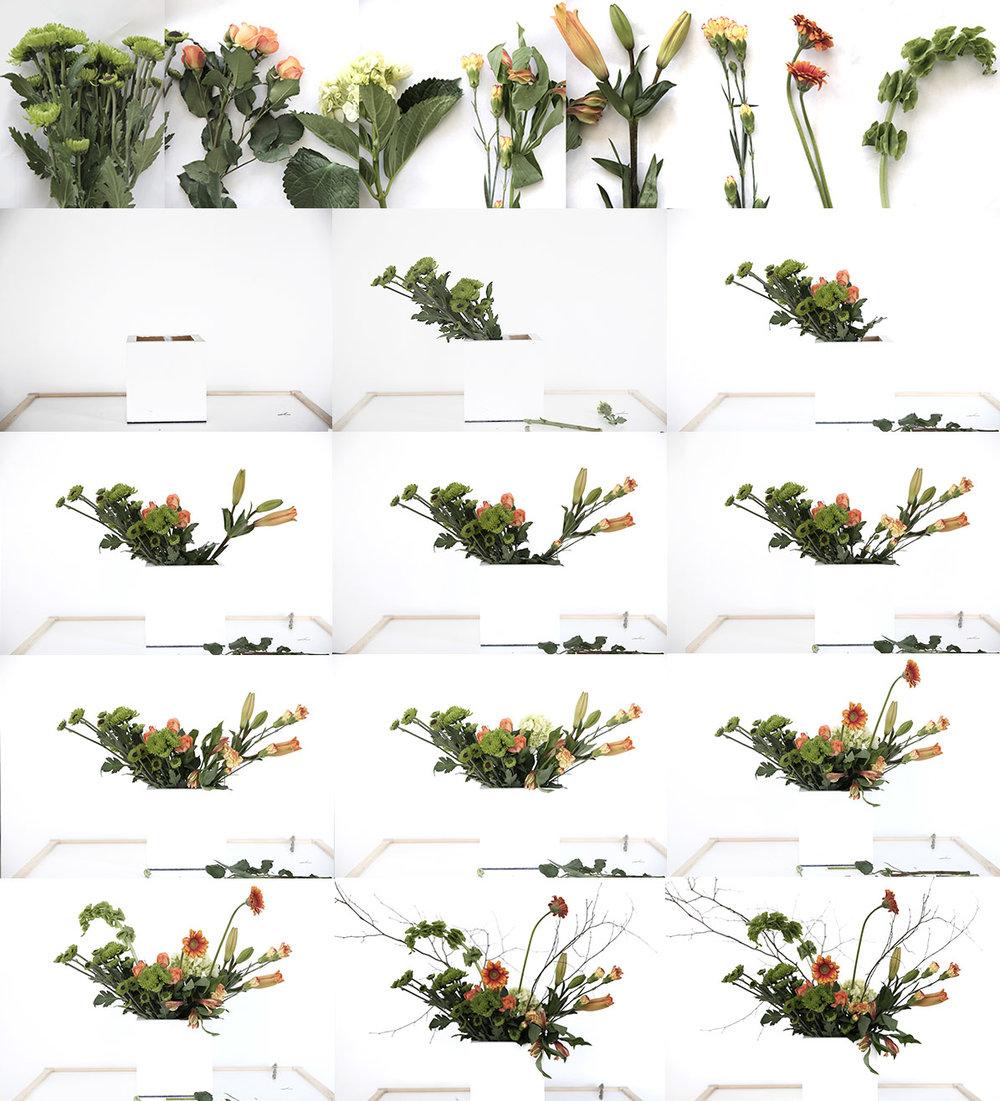 Grocery Store Flowers 6.jpg