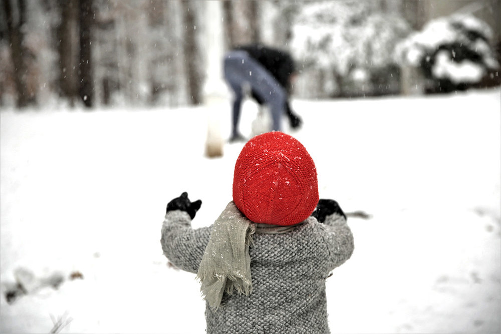 Snow day intro.jpg