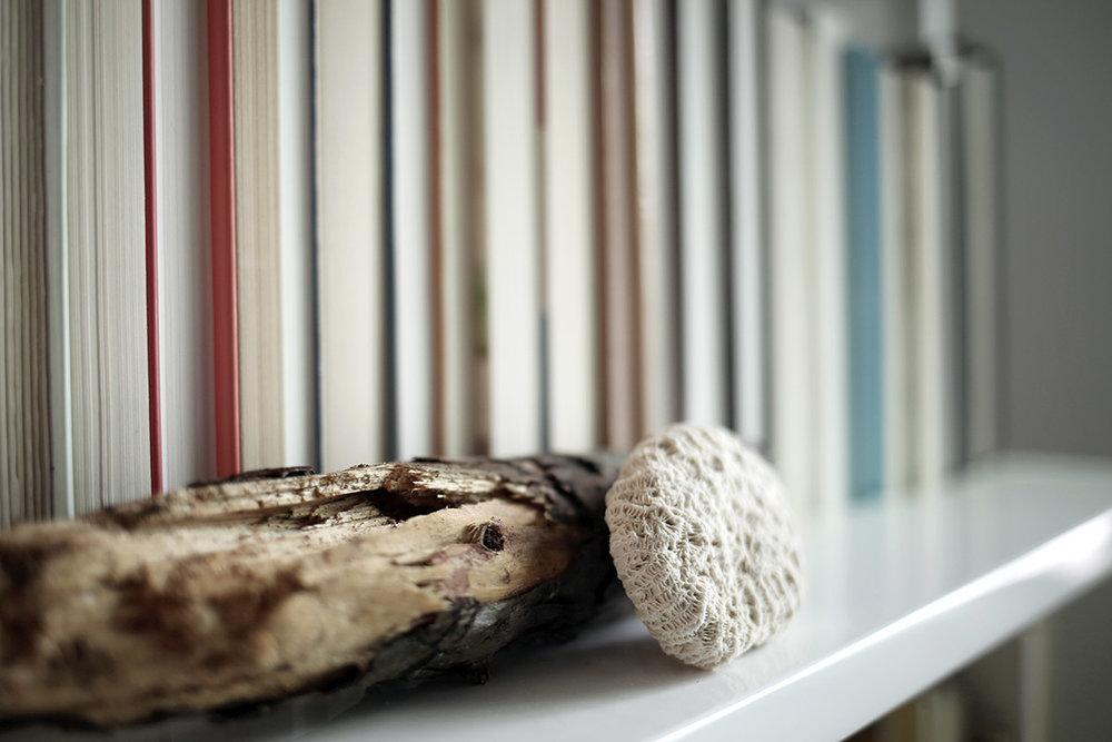 Bookcase Refresh for Spring 4.jpg