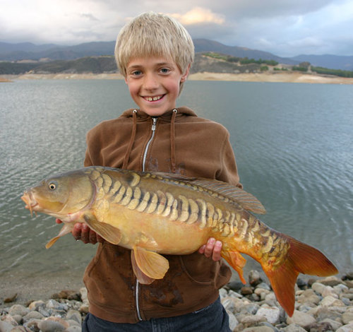 INTRODUCTION TO CARP ANGLING