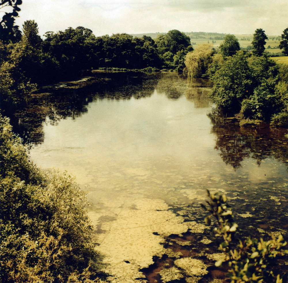 Redmire Pool, perhaps the most significant water ever to surface in the UK.  (Click image to enlarge)