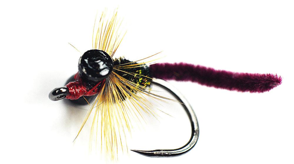 7 fly fishing for carp american carp society