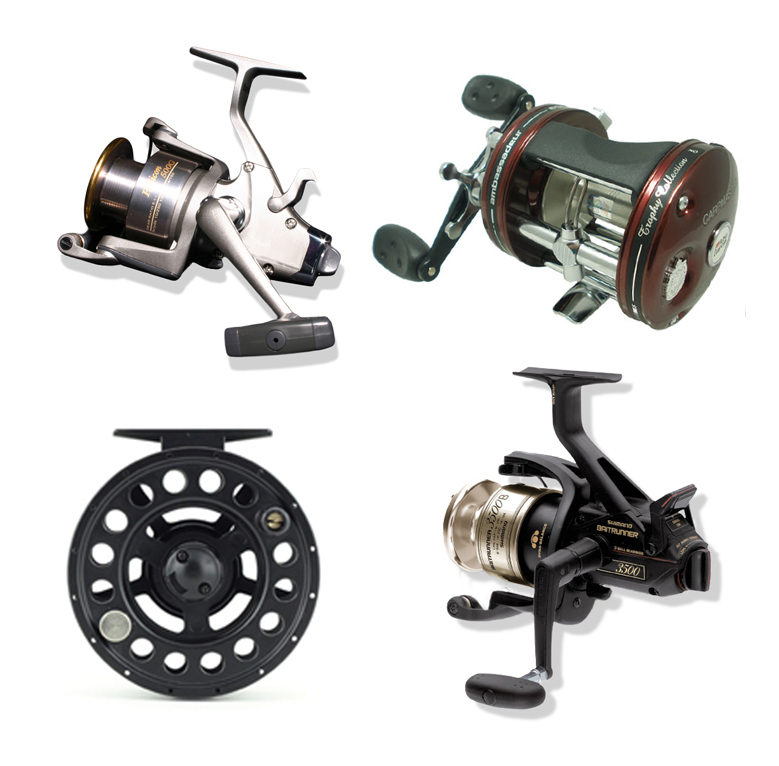 <p><strong>REELS</strong><i>More →</i></p>