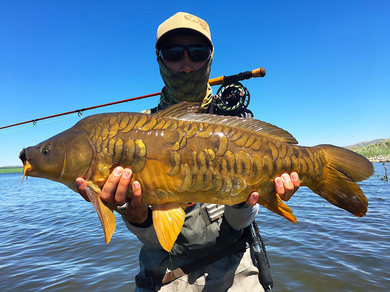 7. Fly-Fishing for Carp — American Carp Society