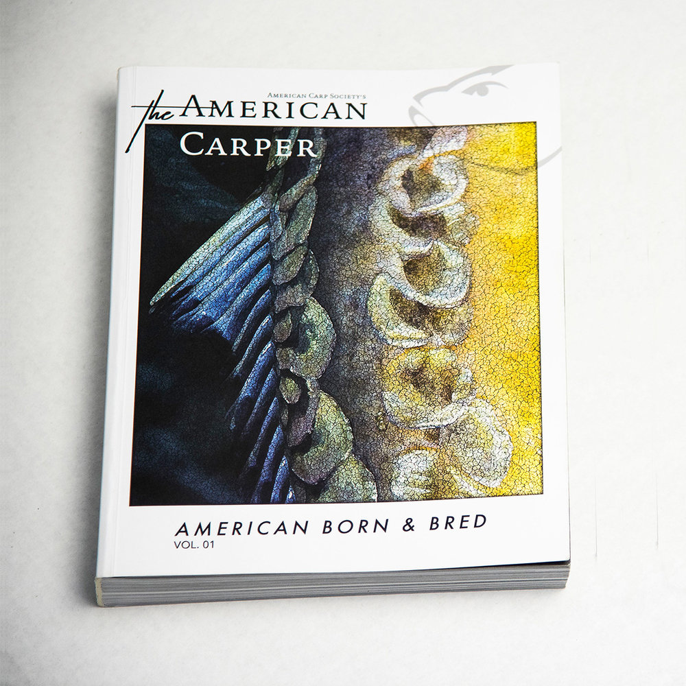 American Born & Bred - Vol.1 - 2018